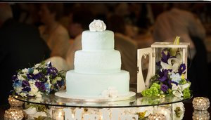 Cannaboe elegant wedgewood blue piped wedding cake