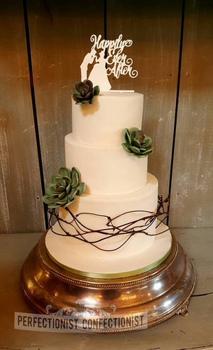 Wedding cake  succulent  elegant  ballymagarvey village  celebration cake  novelty cake  cake dublin  cake malahide  cake swords  %281 %283%29