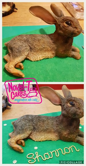 Carved rabbit cake