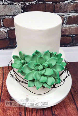 Wedding cake  roganstown  succulents  elegant  chocolate biscuit  gluten free  swords  malahide  kinsealy  rush  skerries   %286%29
