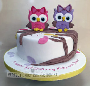 Twins  girls  owls  pink  purple  chocolate biscuit cake  cake  birthday cake  first birthday  1st birthday  swords  malahide  kinsealy  dublin  %283%29