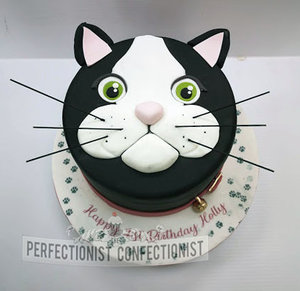 Cat  kitten  pussycat  birthday  cake  pawprints  black cat  dublin  swords  malahide  kinsealy  cake maker  chocolate  vanilla  celebration  bespoke  handmade %286%29