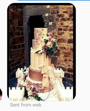 TV3 Lisa Cannons wedding cake which was personally delivered to Florence Italy by Tracy